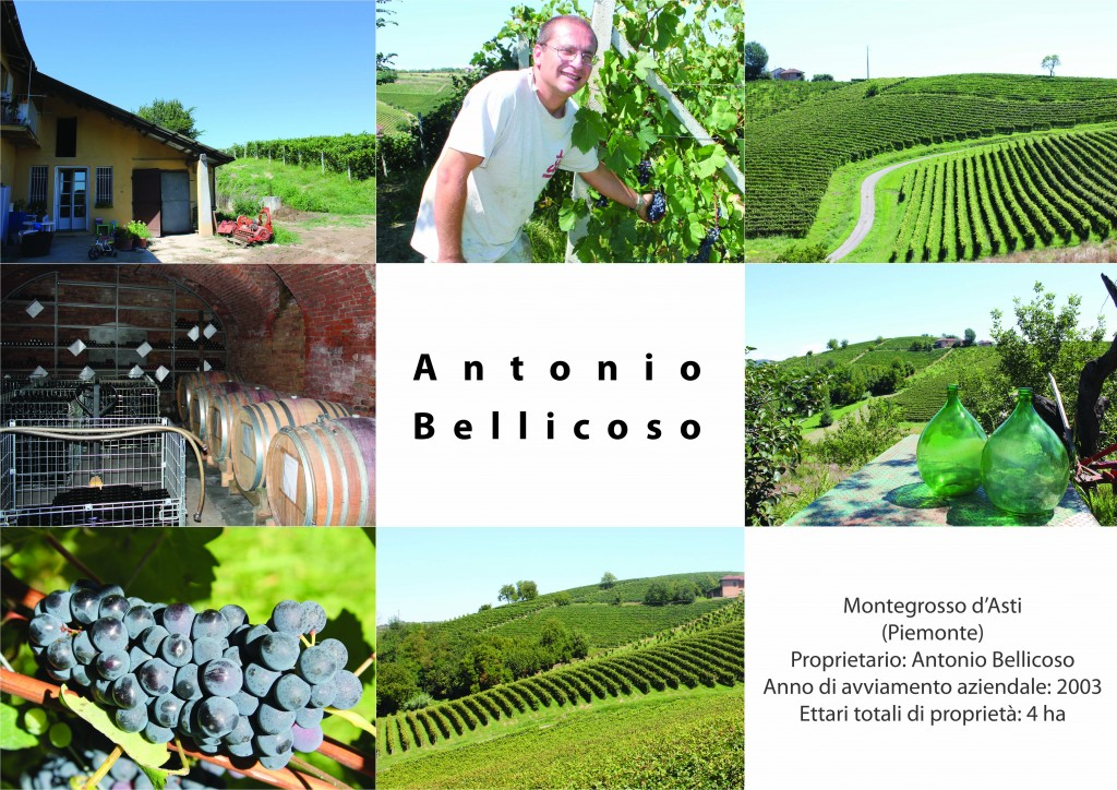 Poster Antonio Bellicoso.indd